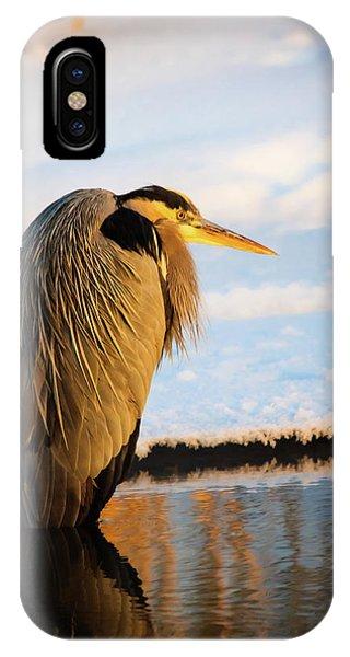 Blue Heron Resting IPhone Case