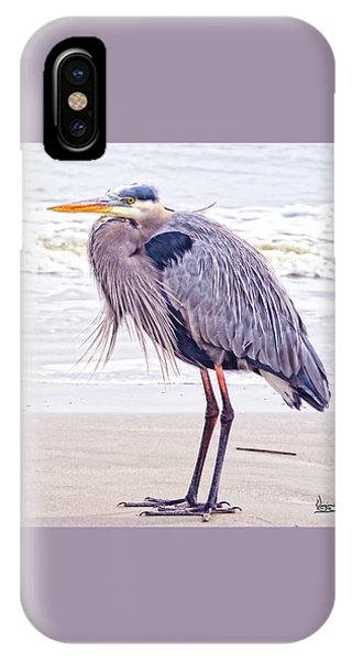 Blue Heron Watching IPhone Case