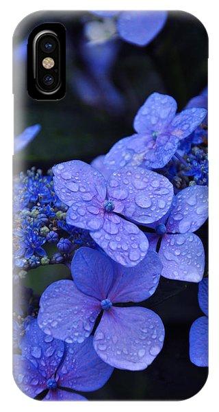 Close Up iPhone Case - Blue Hydrangea by Noah Cole