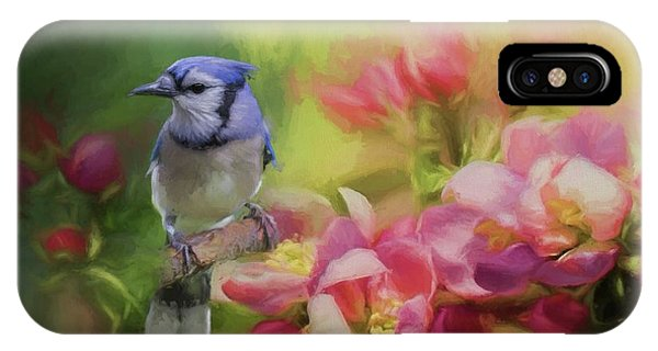 Blue Jay On A Blooming Tree IPhone Case