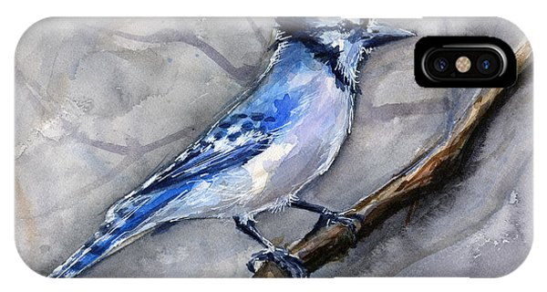 Bird Watercolor iPhone Case - Blue Jay Watercolor by Olga Shvartsur