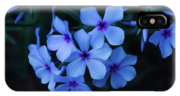 IPhone Case featuring the photograph Blue Moon Phlox by Cristina Stefan