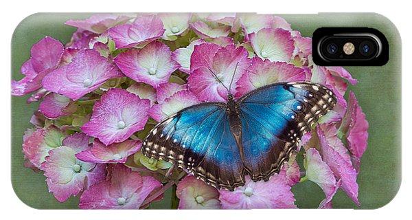 Blue Morpho Butterfly On Pink Hydrangea IPhone Case