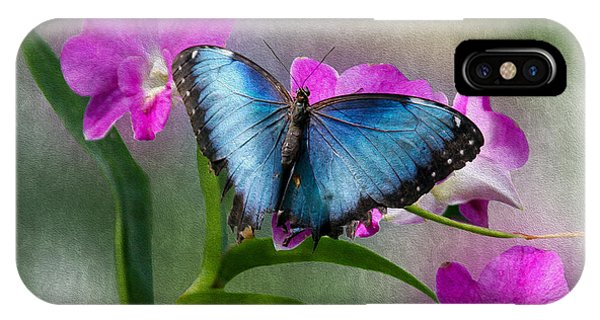 Blue Morpho With Orchids IPhone Case