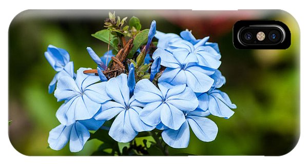 Blue Peddles IPhone Case