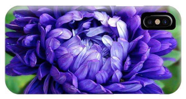 Blue Petals IPhone Case