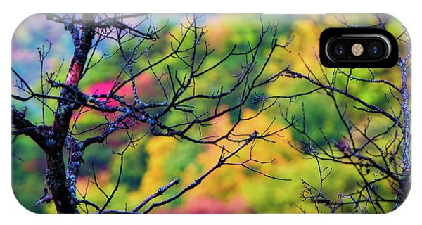 Blue Ridge Autumn IPhone Case
