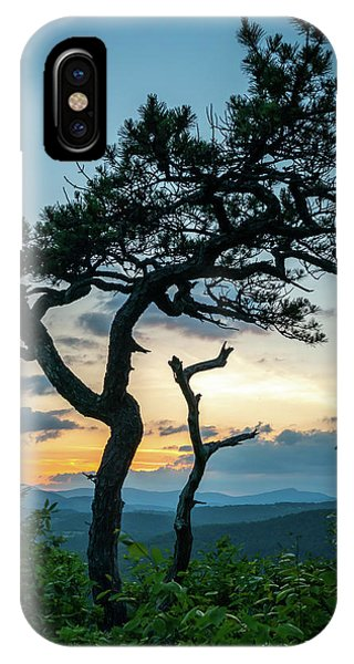 Blue Ridge Mountains Dr. Tree IPhone Case