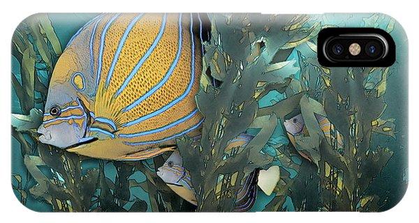 Blue Ring Angelfish In Kelp IPhone Case
