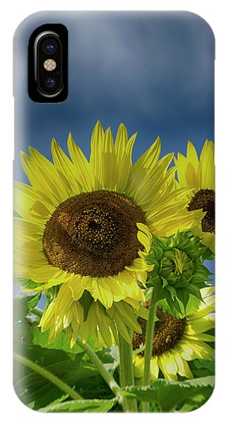 Blue Sky Day IPhone Case