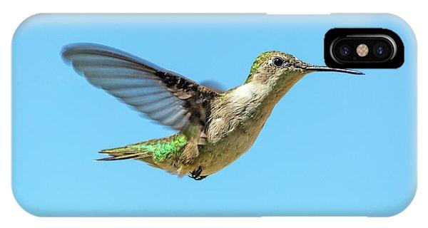 Beautiful Hummingbird iPhone Case - Blue Sky Hummingbird by Betsy Knapp