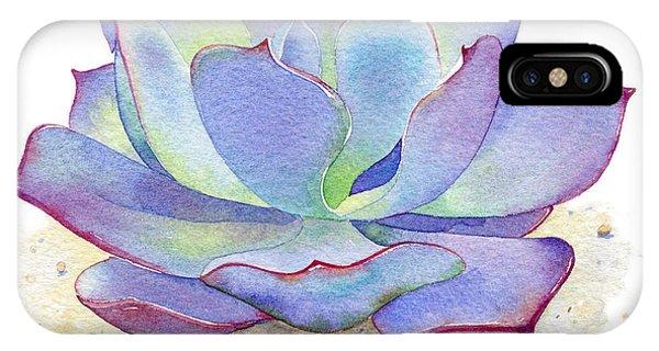 Cactus iPhone Case - Blue Sky Succulent by Laura Nikiel
