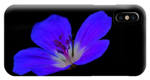 Blue Stamen IPhone Case