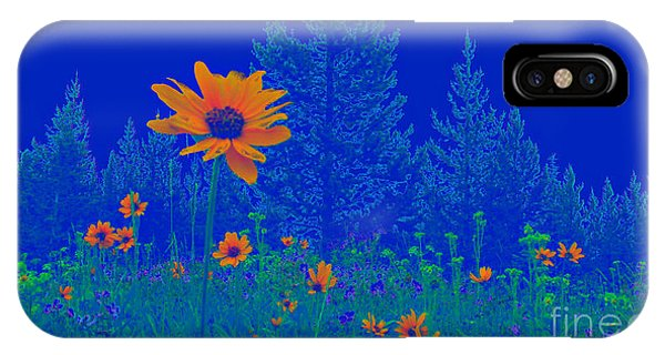 Blue Summer IPhone Case