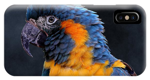 Blue-throated Macaw Profile IPhone Case