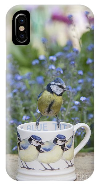 Titmouse iPhone Case - Blue Tit Mug by Tim Gainey