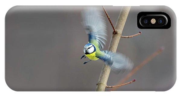 Blue Tit In Flight IPhone Case