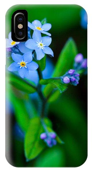 Blue Topper IPhone Case