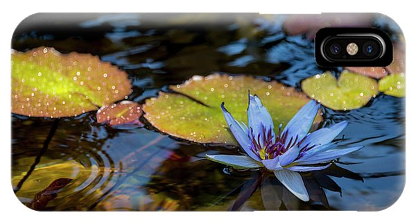 Aquatic Plants iPhone Case - Blue Water Lily Pond by Brian Harig