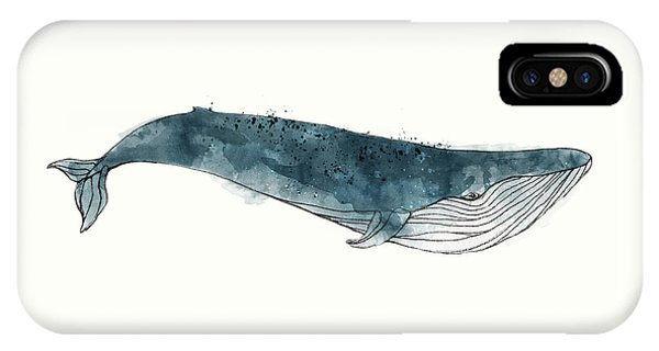 Whale iPhone Case - Blue Whale From Whales Chart by Amy Hamilton