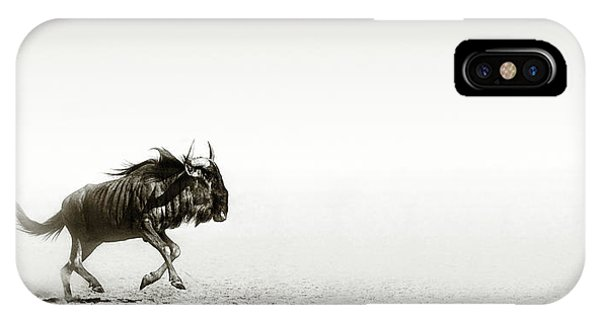 Monochrome iPhone Case - Blue Wildebeest In Desert by Johan Swanepoel