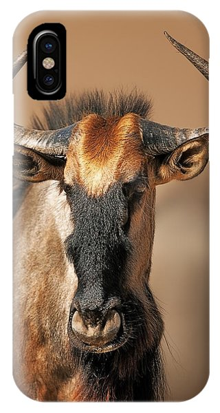 Close-up iPhone Case - Blue Wildebeest Portrait by Johan Swanepoel