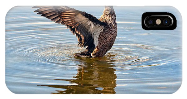 Blue Winged Teal 3 IPhone Case