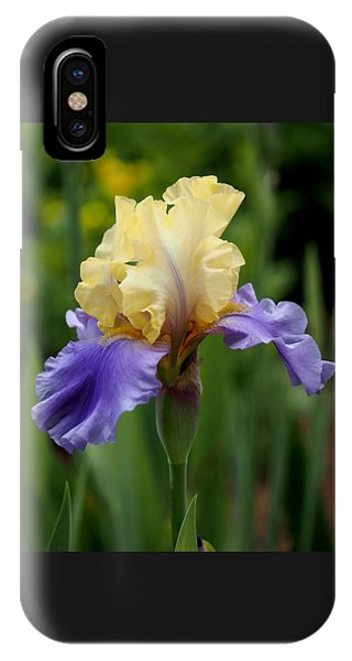Blue Yellow Iris Germanica IPhone Case