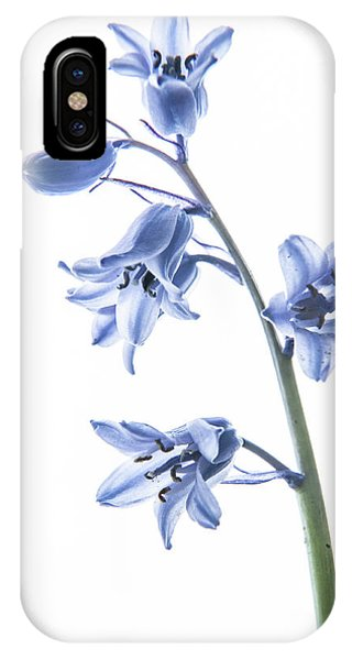 Bluebell Stem IPhone Case