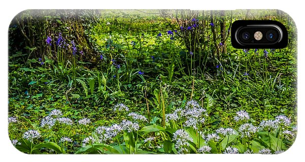 Bluebells And Wild Garlic At Coole Park IPhone Case