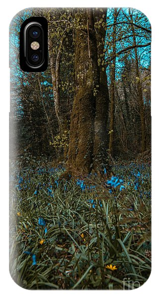 Bluebells In Lismore Forest 2 IPhone Case