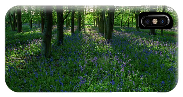 Bluebells In Oxey Woods IPhone Case