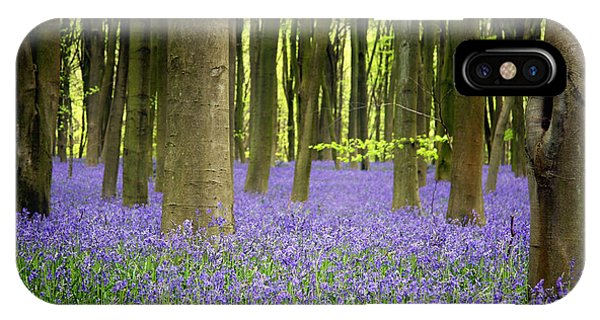 Scent iPhone Case - Bluebells by Jane Rix