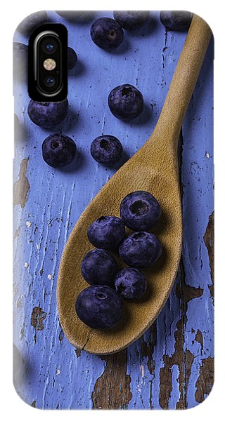 Blue Berry iPhone Case - Blueberries On Blue Board by Garry Gay