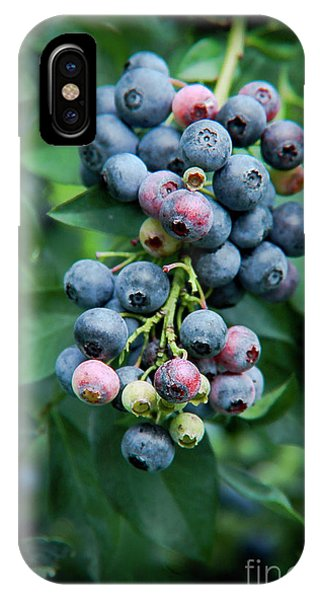 Blueberry Cluster IPhone Case