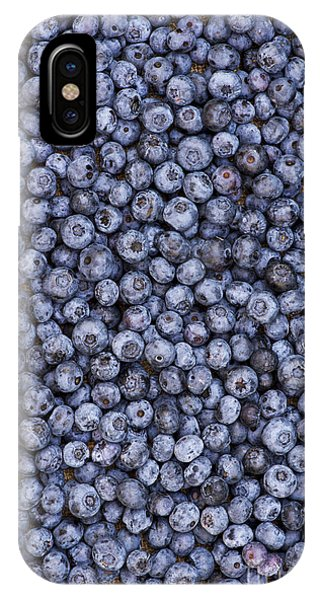 Blue Berry iPhone Case - Blueberry Harvest by Tim Gainey
