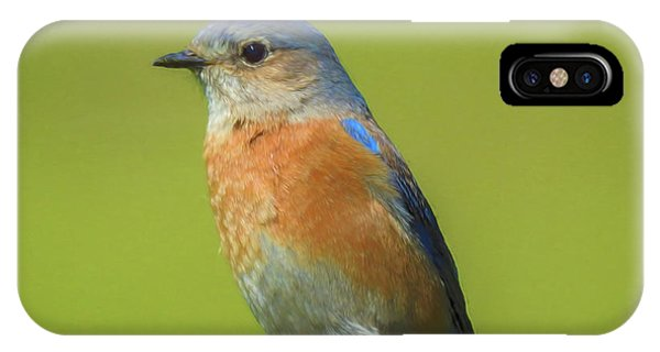 Bluebird Digital Art IPhone Case