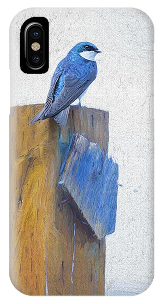 IPhone Case featuring the photograph Bluebird by James BO Insogna