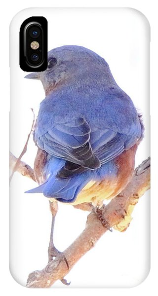Bluebird On White IPhone Case