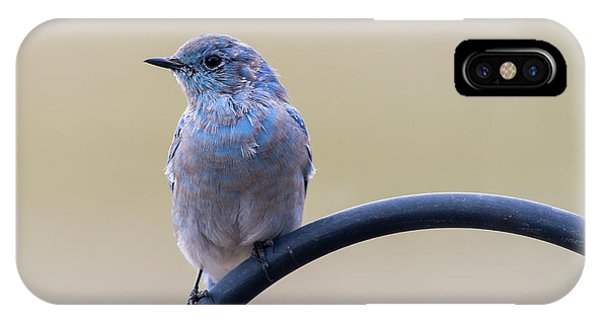 IPhone Case featuring the photograph Bluebird Portrait by John Brink