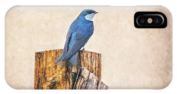 IPhone Case featuring the photograph Bluebird Post by James BO Insogna