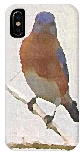 Bluebird Stare  IPhone Case