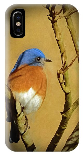 Bluebird Waiting For Spring IPhone Case