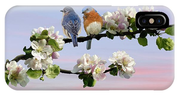 Bluebirds In Apple Tree IPhone Case