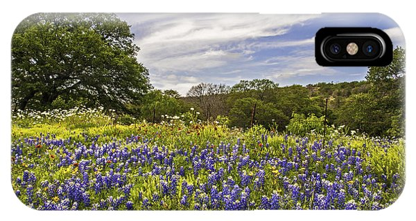 Bluebonnet Spring IPhone Case
