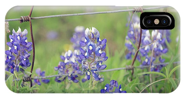 Bluebonnets By The Fence IPhone Case