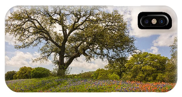 Bluebonnets Paintbrush And An Old Oak Tree - Texas Hill Country IPhone Case