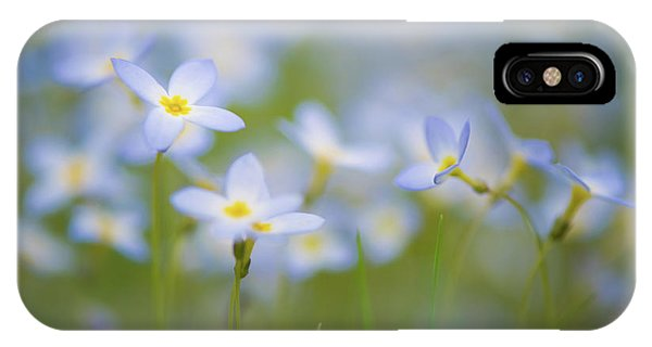 Bluets / Innocence IPhone Case