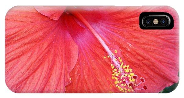 Blushing Stamen Phone Case by Debbie May