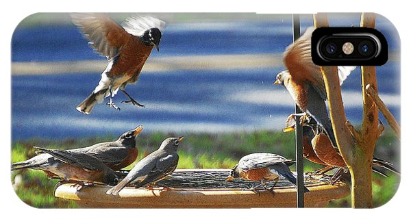 Avian iPhone Case - Bobbin Robins by DigiArt Diaries by Vicky B Fuller
